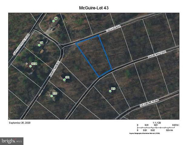 Lot 43 Locust Lane, MOUNT JACKSON, VA 22842 (#VASH120420) :: The Licata Group/Keller Williams Realty