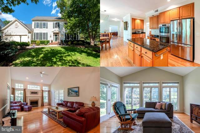 43244 Lighthouse Place, CHANTILLY, VA 20152 (#VALO422356) :: The Redux Group