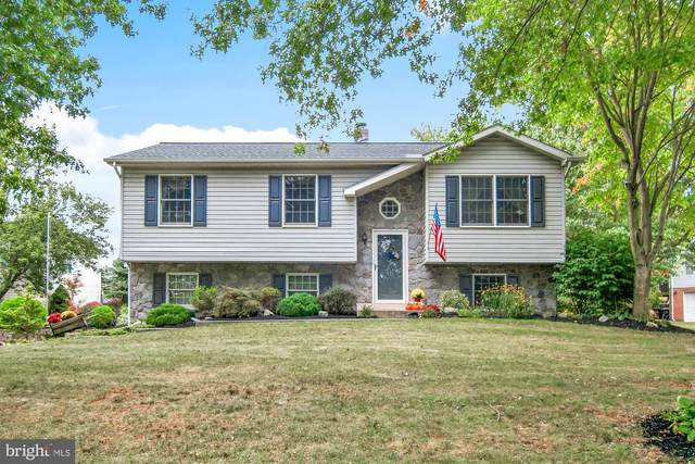 435 Big Sky Drive, ETTERS, PA 17319 (#PAYK146218) :: ExecuHome Realty