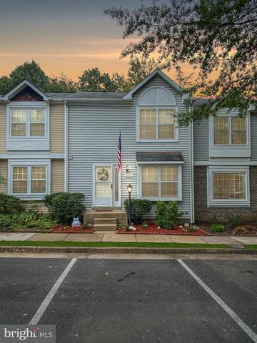 6131 Rocky Way Court, CENTREVILLE, VA 20120 (#VAFX1157864) :: The Maryland Group of Long & Foster Real Estate