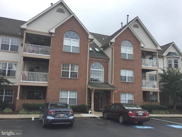 6501 Springwater Court #8203, FREDERICK, MD 21701 (#MDFR271416) :: The Miller Team