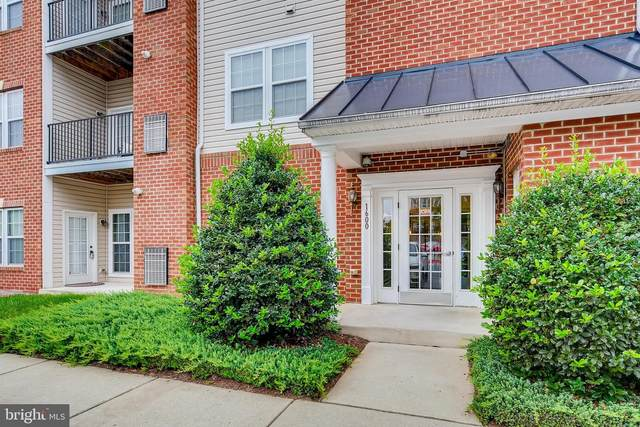 1600 Hardwick Court #101, HANOVER, MD 21076 (#MDAA447984) :: Shamrock Realty Group, Inc