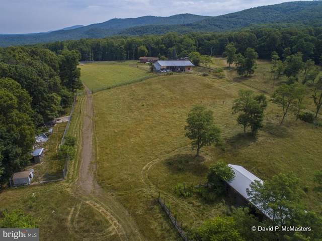 42 NE Beverly Lane NE, WARDENSVILLE, WV 26851 (#WVHD106372) :: The Mike Coleman Team