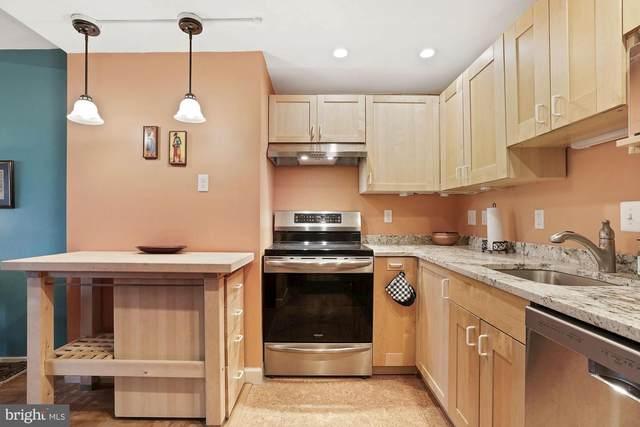 1311 Delaware Avenue SW S445, WASHINGTON, DC 20024 (#DCDC489020) :: Tom & Cindy and Associates