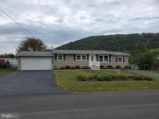 194 Mountain View Drive, KEYSER, WV 26726 (#WVMI111440) :: Bruce & Tanya and Associates