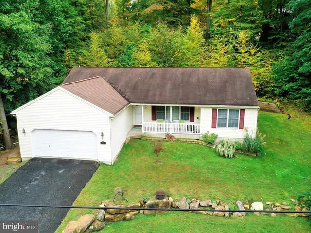 42 Papoose Drive, AUBURN, PA 17922 (#PASK132596) :: The Team Sordelet Realty Group