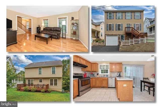 13 Terrace Avenue, BRUNSWICK, MD 21716 (#MDFR271484) :: Blackwell Real Estate