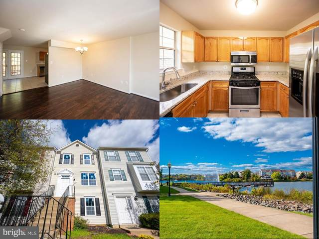 20848 Apollo Terrace, ASHBURN, VA 20147 (#VALO422488) :: AJ Team Realty