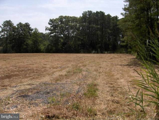 Wesley Road, TODDVILLE, MD 21672 (#MDDO126140) :: Pearson Smith Realty