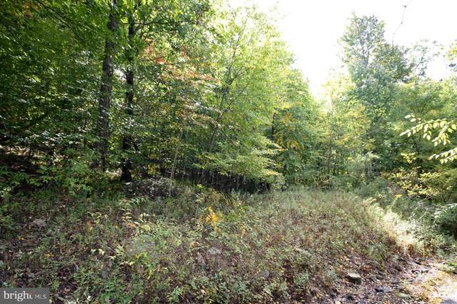 Lot S Highwood Drive, MC HENRY, MD 21541 (#MDGA133686) :: Advon Group