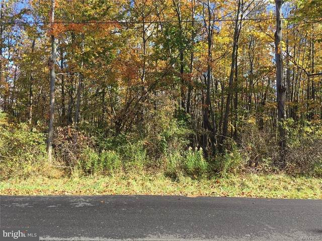 Robert Crain Highway, BRANDYWINE, MD 20613 (#MDPG582838) :: The Maryland Group of Long & Foster Real Estate