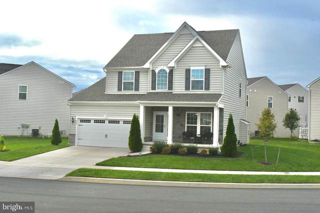 338 Tiger Lily Drive, MIDDLETOWN, DE 19709 (#DENC510220) :: Linda Dale Real Estate Experts
