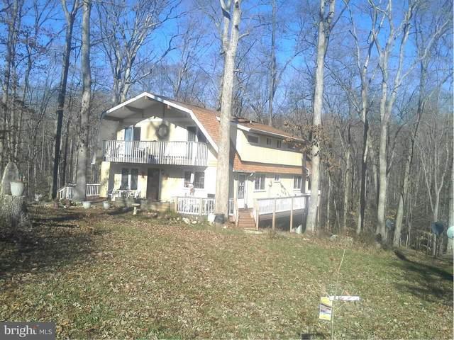 15212 Lost Horizon Lane, FREDERICKSBURG, VA 22407 (#VASP225662) :: SP Home Team
