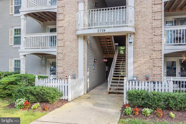 5704 Shadwell Court #87, ALEXANDRIA, VA 22309 (#VAFX1158568) :: RE/MAX Cornerstone Realty