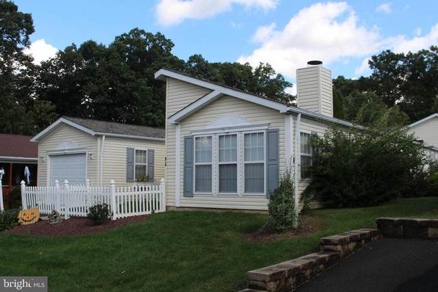 416 Redbird Court, NEW HOPE, PA 18938 (#PABU508308) :: REMAX Horizons