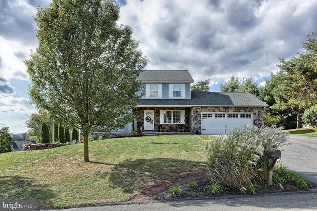 101 Wilt Boulevard, MILLERSBURG, PA 17061 (#PADA126260) :: The Jim Powers Team