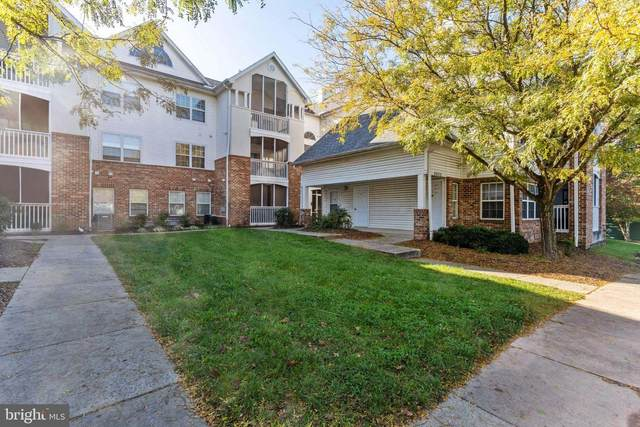 6602 Lake Park Drive 3D, GREENBELT, MD 20770 (#MDPG583056) :: The Poliansky Group