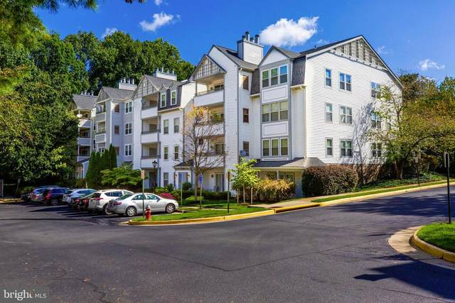 7702 Lafayette Forest Drive #32, ANNANDALE, VA 22003 (#VAFX1158736) :: RE/MAX Cornerstone Realty