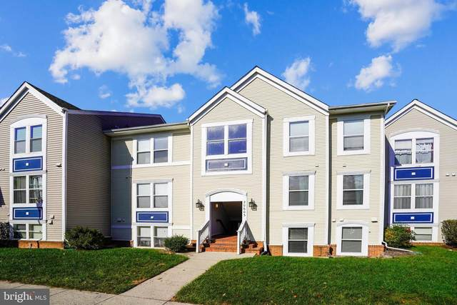 20603 Cornstalk Terrace #202, ASHBURN, VA 20147 (#VALO422714) :: Pearson Smith Realty