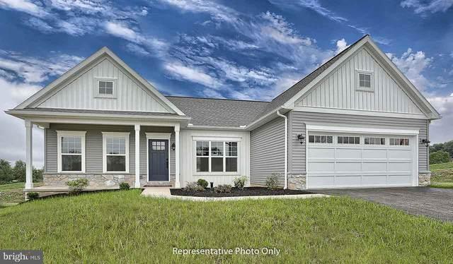803 Briar Rose Avenue, LEBANON, PA 17046 (#PALN116064) :: Liz Hamberger Real Estate Team of KW Keystone Realty
