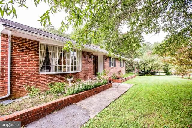 303 Greenwood Drive, FREDERICKSBURG, VA 22405 (#VAST226068) :: Bruce & Tanya and Associates