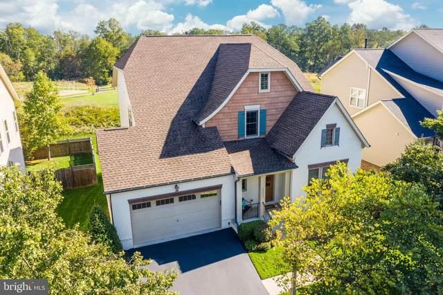 23330 Morning Walk Drive, BRAMBLETON, VA 20148 (#VALO422790) :: Blackwell Real Estate