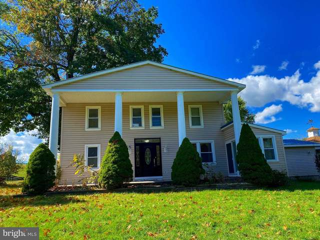 1264 Tearcoat Road, AUGUSTA, WV 26704 (#WVHS114780) :: Bruce & Tanya and Associates