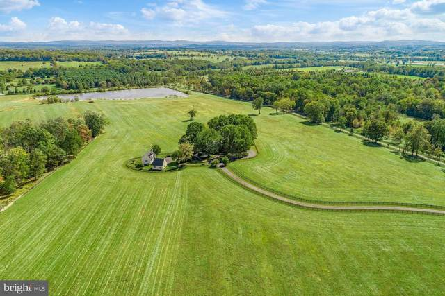 21167 Trappe Road, UPPERVILLE, VA 20184 (#VALO422830) :: The Riffle Group of Keller Williams Select Realtors
