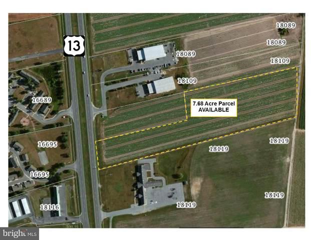0 E Route 13, BRIDGEVILLE, DE 19933 (#DESU170524) :: LoCoMusings