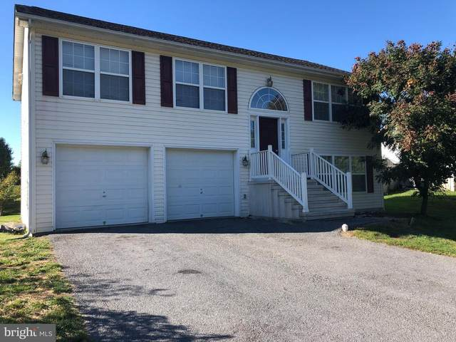 233 Acoustic Drive, MARTINSBURG, WV 25404 (#WVBE180862) :: Great Falls Great Homes