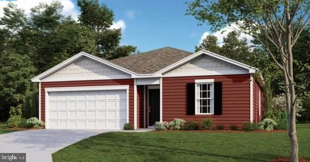 31815 Geyser Court, LEWES, DE 19958 (#DESU170562) :: Linda Dale Real Estate Experts