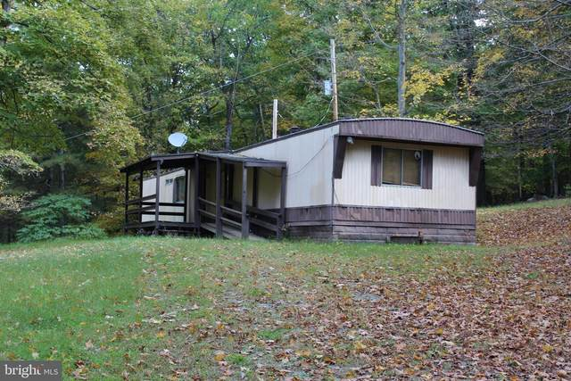 195 Jacksonville Road, CLEARVILLE, PA 15535 (#PABD102544) :: The Dailey Group
