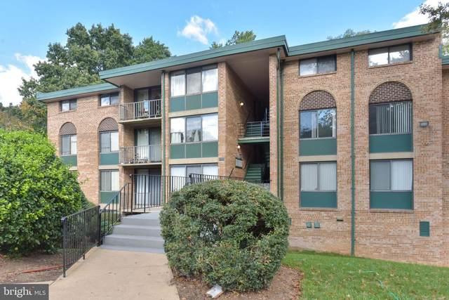 493 N Armistead Street #302, ALEXANDRIA, VA 22312 (#VAAX251846) :: Jacobs & Co. Real Estate