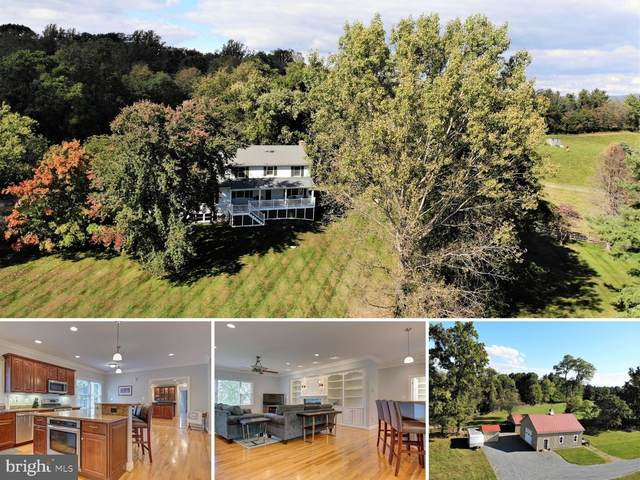 35554 Deer Crossing Lane, ROUND HILL, VA 20141 (#VALO422988) :: Pearson Smith Realty
