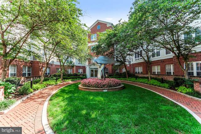 801 S Greenbrier Street #411, ARLINGTON, VA 22204 (#VAAR170832) :: Advon Group