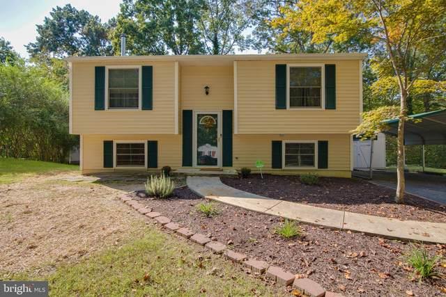 15 Hickory Ridge Drive, FREDERICKSBURG, VA 22405 (#VAST226158) :: RE/MAX Cornerstone Realty