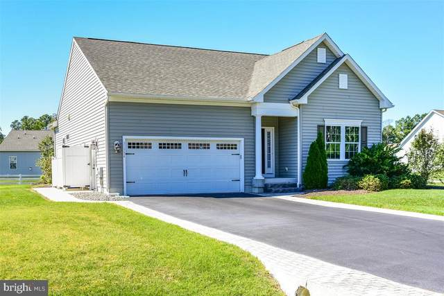 31334 Riverwood Road, MILLSBORO, DE 19966 (#DESU170750) :: Ramus Realty Group