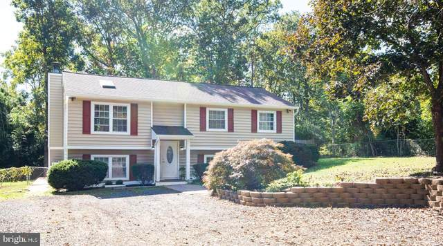 4361 Grapewood Drive, WARRENTON, VA 20187 (#VAFQ167636) :: RE/MAX Cornerstone Realty