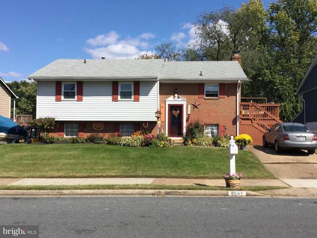 8247 Brandon Drive, MILLERSVILLE, MD 21108 (#MDAA449074) :: Bob Lucido Team of Keller Williams Integrity