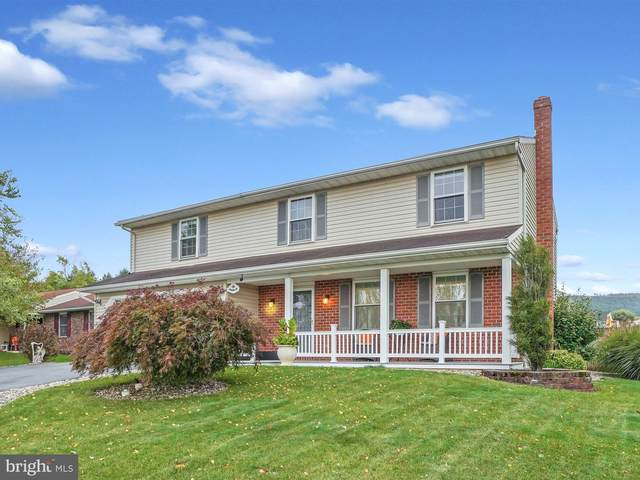 18 Treeline Drive, NEWMANSTOWN, PA 17073 (#PALN116162) :: TeamPete Realty Services, Inc
