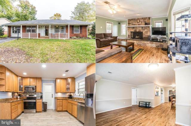 1100 N Brandon Avenue, STERLING, VA 20164 (#VALO423160) :: Great Falls Great Homes