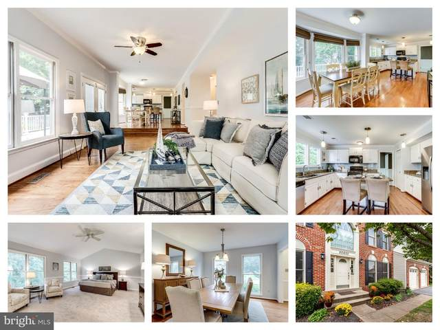 20633 Camptown Court, ASHBURN, VA 20147 (#VALO423172) :: AJ Team Realty