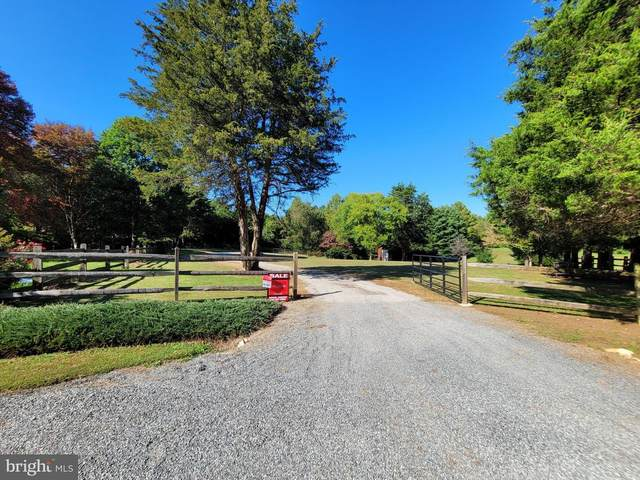 42 Cedar Ct, MINERAL, VA 23117 (#VALA122086) :: SURE Sales Group