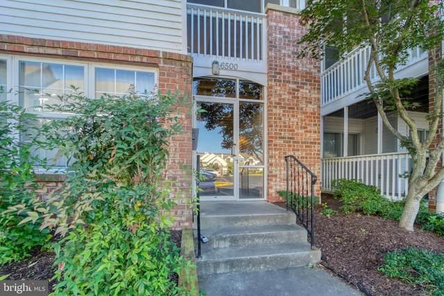6500 Lake Park Drive 3A, GREENBELT, MD 20770 (#MDPG583870) :: Jennifer Mack Properties