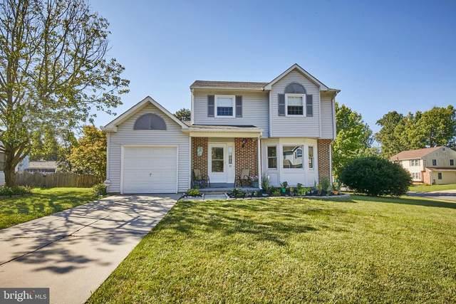 45 Danvers Circle, NEWARK, DE 19702 (#DENC510838) :: Linda Dale Real Estate Experts