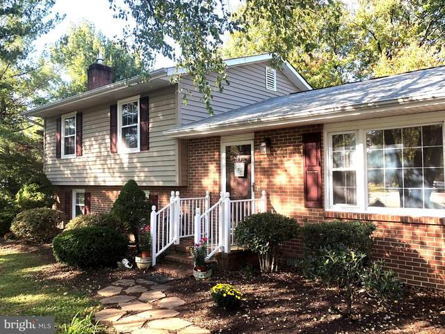 5 Wickham Court, FREDERICKSBURG, VA 22405 (#VAST226244) :: The Schiff Home Team