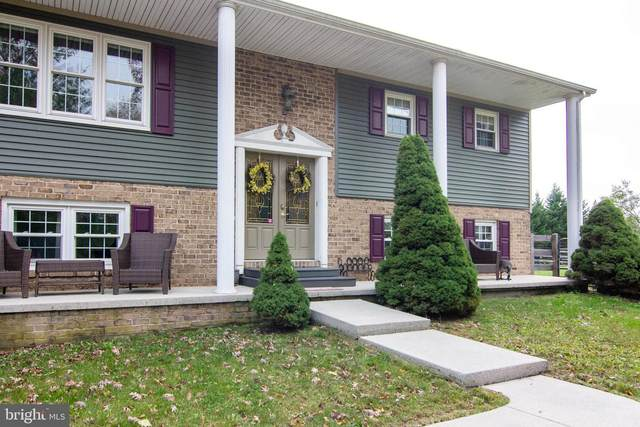 115 Little Avenue, NEW OXFORD, PA 17350 (#PAAD113570) :: The Joy Daniels Real Estate Group