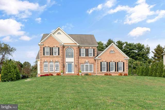 34 Rock Hollow Court, ELKTON, MD 21921 (#MDCC171476) :: LoCoMusings