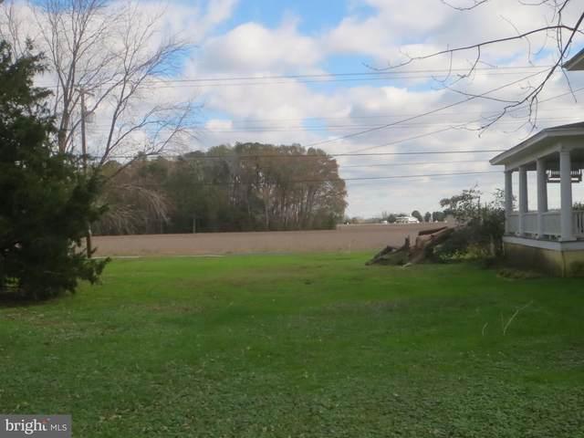 Main Street, TRAPPE, MD 21673 (MLS #MDTA139486) :: Maryland Shore Living | Benson & Mangold Real Estate