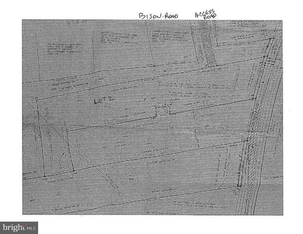 0 Bison Road, CAMDEN WYOMING, DE 19934 (#DEKT242656) :: CoastLine Realty